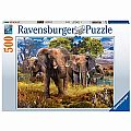 Elephant Family Puzzle 500pcs