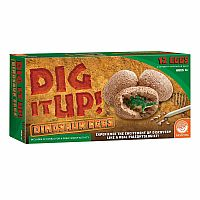 Dinosaur Eggs Excavation Kit