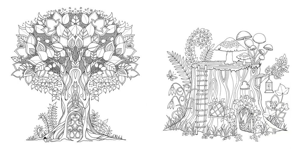Enchanted Forest: An Inky Quest & Coloring Book - Building ...